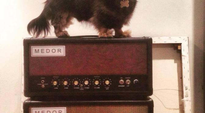 DIYFS – MEDOR Amps